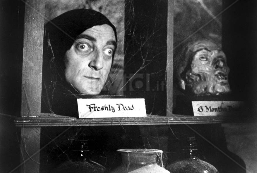 MARTY FELDMAN in Young Frankenstein *Editorial Use Only* Ref: FB www.capitalpictures.com sales@capitalpictures.com Supplied by Capital Pictures