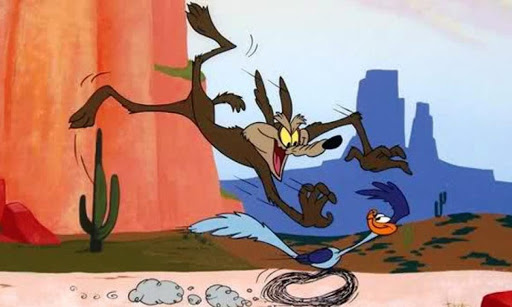 WILE COYOTE.2020.09.16-05